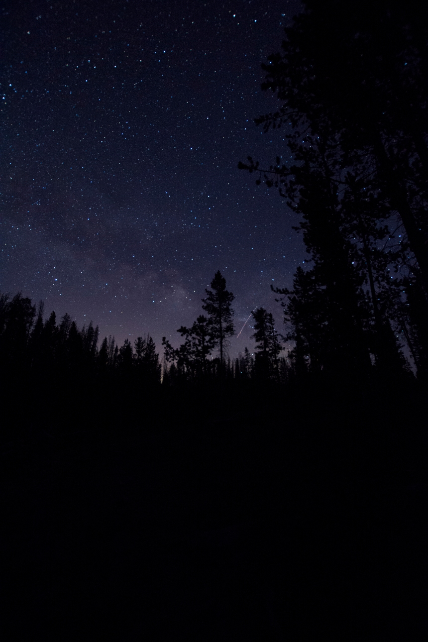 constellation_purple
