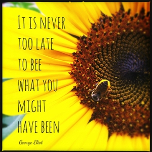 """""""It is never too late to be, what you might have been."""" George Eliot"""