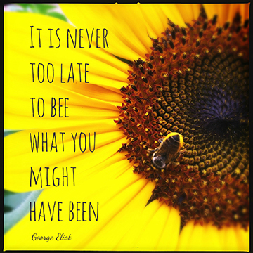 """It is never too late to be, what you might have been."" George Eliot"