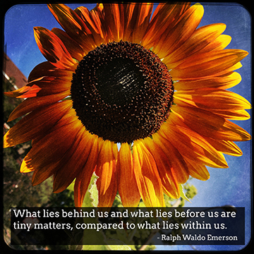 """"""" What lies behind us and what lies before us are tiny matters, compared to what lies within us."""" - Ralph Waldo Emerson"""